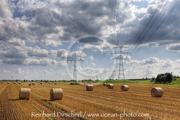 Electricity Pylon and Wheat Field, Munich, Bavaria, Germany